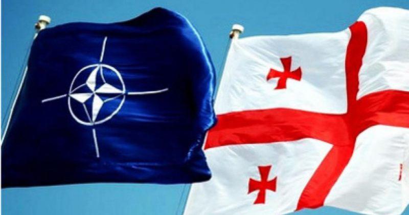 NATO-ს საპარლამენტო ასამბლეა ივანიშვილის მთავრობას აკრიტიკებს