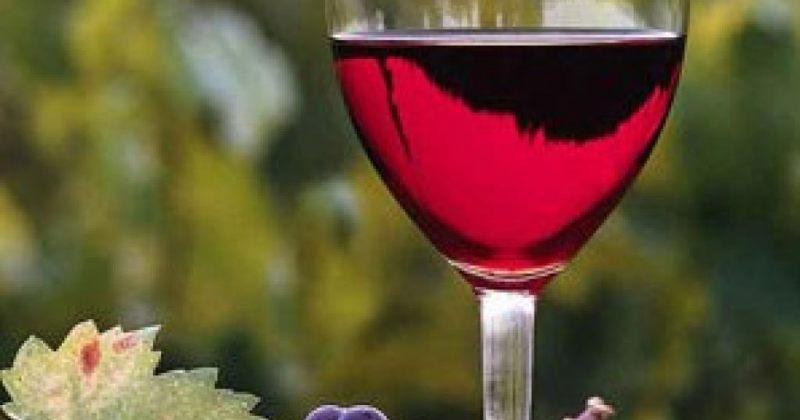 ლევან დავითაშვილი: ქართული ღვინო რუსეთში, სულ მცირე, 300 რუბლი ეღირება