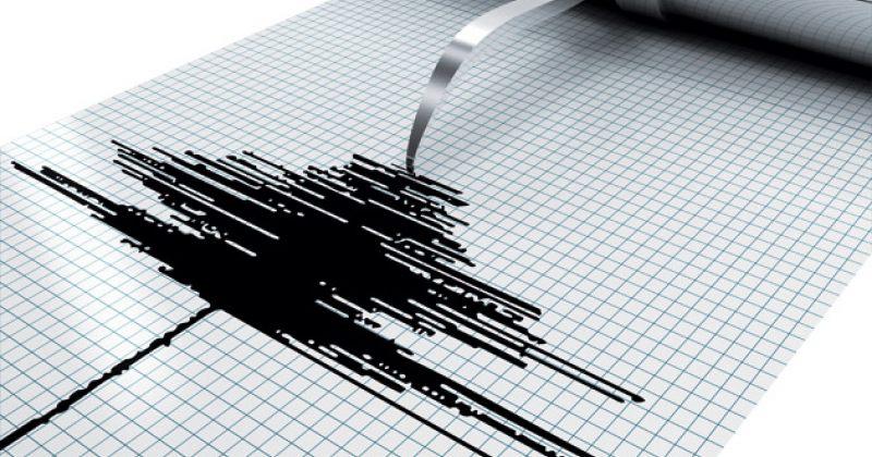 სოფელ სამებასთან 3.1 მაგნიტუდის მიწისძვრა მოხდა