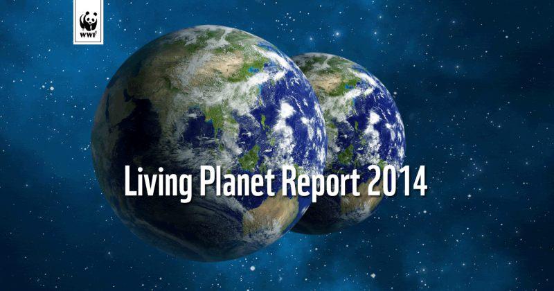 40 წელიწადში დედამიწის ბინადარი ცხოველების რაოდენობა 52%-ით შემცირდა