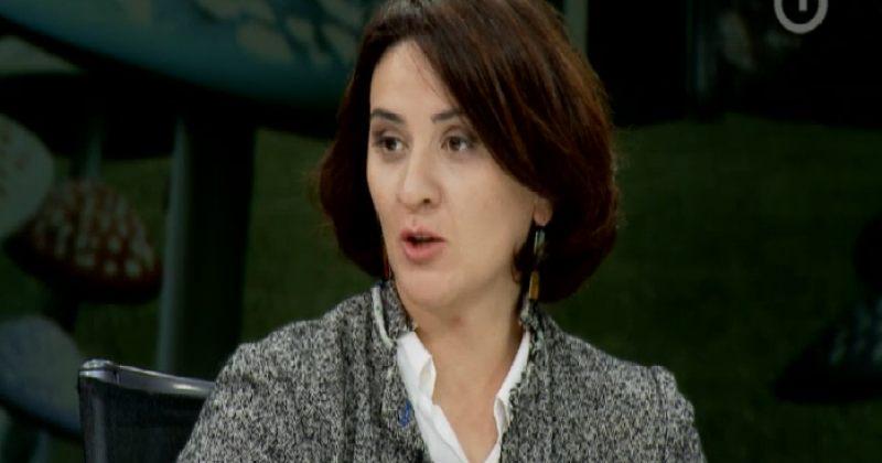 ევგენიძე: მთავრობის საქმიანობაში ადეკვატურობის დანახვა ცოტა ძნელი იყო