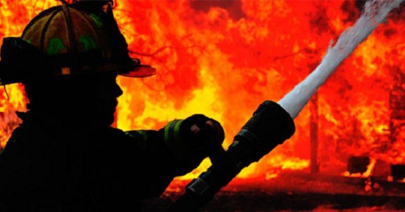 გლდანის ხევში ხანძარია, ცეცხლი 5000 კვადრატულ მეტრზე გავრცელდა