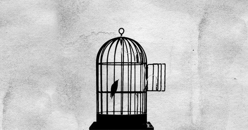 თავისუფლება