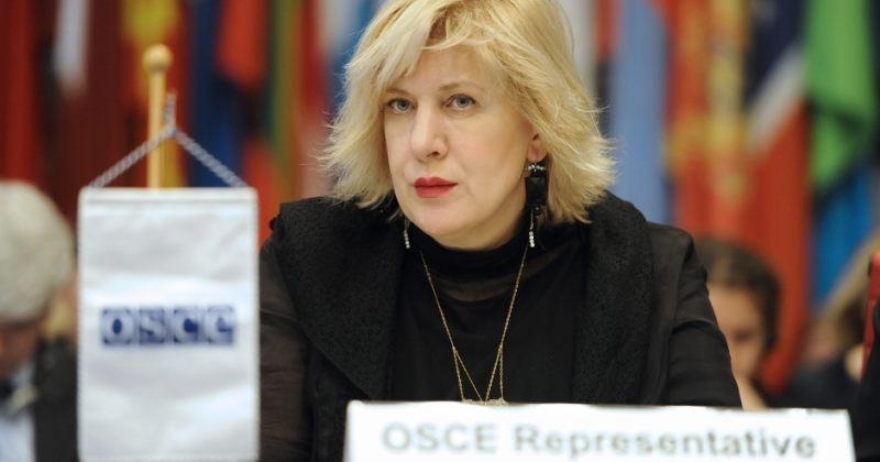 მიატოვიჩი: მოვუწოდებ ხელისუფლებას, უზრუნველყოს მედიაპლურალიზმი საქართველოში