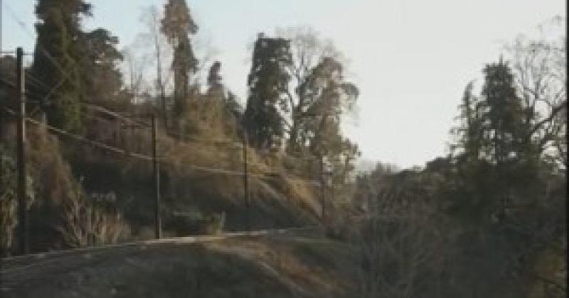 პროკურატურა: ციხისძირში  90 605 კვ.მ. ფართობის მიწა სახელმწიფოს დაუბრუნდა