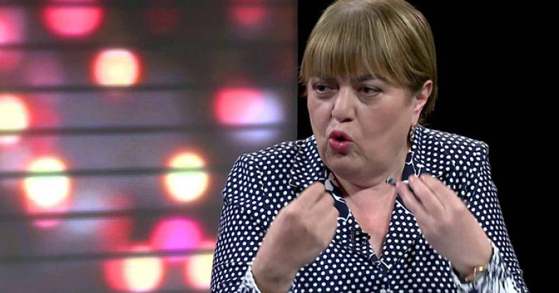გოგორიშვილი: საქართველოს ხელისუფლება რუსეთს სასათბურე პირობებს უქმნის