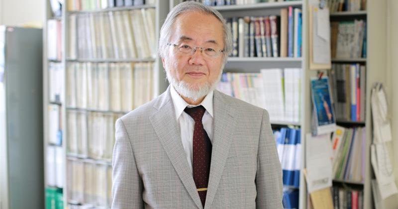 იაპონელი მეცნიერი იოშინორი ოსუმი მედიცინასა და ფიზიოლოგიაში ნობელის პრემიას მიიღებს