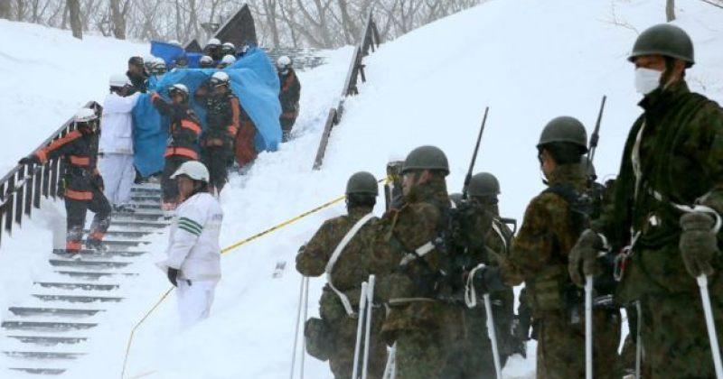 იაპონიაში ზვავის ჩამოწოლას სულ მცირე 7 ადამიანი ემსხვერპლა
