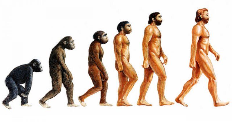 თურქეთი სასკოლო პროგრამიდან დარვინის ევოლუციის თეორიის ამოღებას გეგმავს