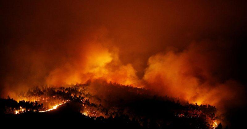 პორტუგალიაში ტყის ხანძარის მსხვერპლი 62-მდე გაიზარდა