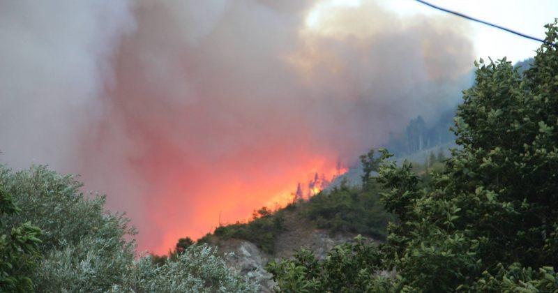 გარემოს დაცვის სამინისტრო: ცეცხლის ლოკალიზება გაძლიერებული ქარის გამო ვერ ხერხდება