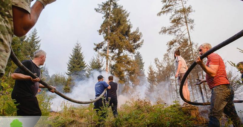 მღებრიშვილი: ბორჯომის ხეობაში ცეცხლის ღია კერების გაჩენის საფრთხე არ არსებობს