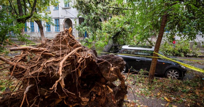 რუმინეთში ძლიერი ქარიშხლის შედეგად, რვა ადამიანი დაიღუპა და მინიმუმ 67 - დაშავდა