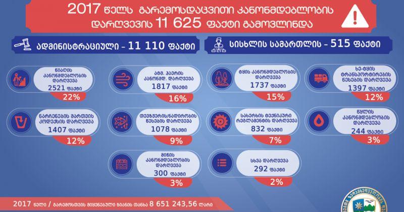 2017 წელს, გარემოსდაცვითი კანონმდებლობის დარღვევის 11 625 ფაქტი გამოვლინდა