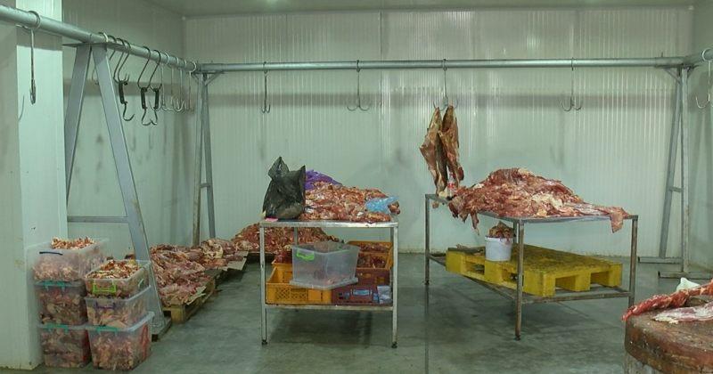 სურსათის სააგენტო: შპს ახალი ხორცი 500 კგ-ზე მეტ საეჭვო წარმომავლობის ხორცს ყიდდა