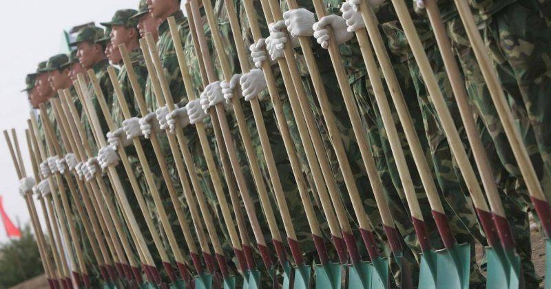 ჩინეთმა ხეების დასარგავად 60,000 ჯარისკაცი გამოყო
