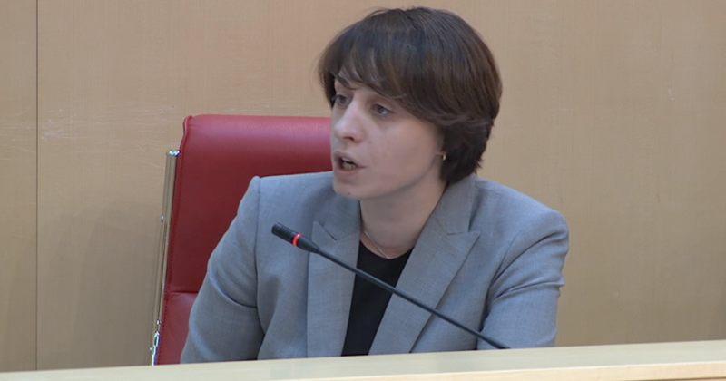 ელენე ხოშტარია: გუშინ, ქართულმა ოცნებამ ყველა უბანთან კრიმინალების კონცენტრაცია მოაწყო