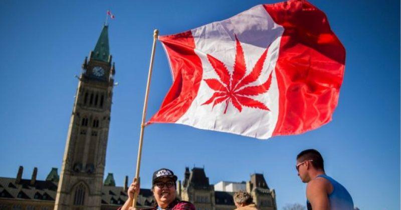 კანადის პარლამენტმა მარიხუანის ლეგალიზაციას მხარი დაუჭირა