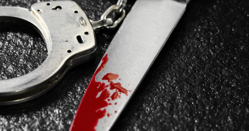 შსს: ხობში 79 წლის კაცმა შვილიშვილი დანით დაჭრა