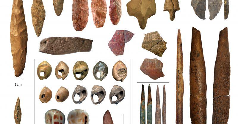 თანამედროვე ადამიანი ერთი წინაპარი პოპულაციისგან არ წარმოშობილა