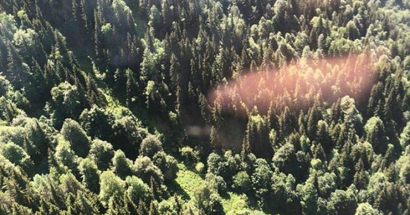 ლენტეხის ტყეში გაჩენილი ხანძრის ლოკალიზებაში ვერტმფრენი ჩაერთვება