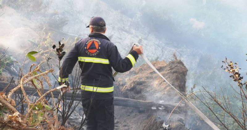 ხაშურში, ტყის ხანძრის ჩაქრობას 220 მეხანძრე ცდილობს - ფოტოები