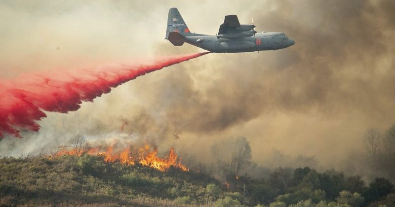 კალიფორნიაში ტყის ხანძარმა ისტორიულ მასშტაბებს მიაღწია, დაღუპულია 7 ადამიანი