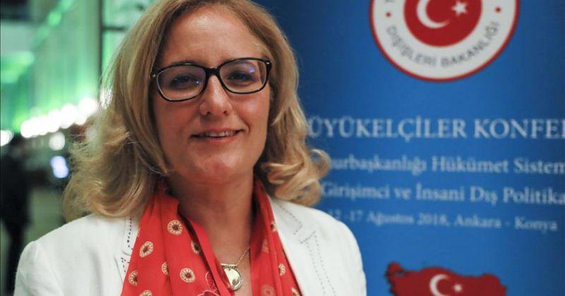 თურქეთის ელჩი ნამახვანზე: ვიმედოვნებთ, საქართველოში თურქული ინვესტიციები დაცული იქნება