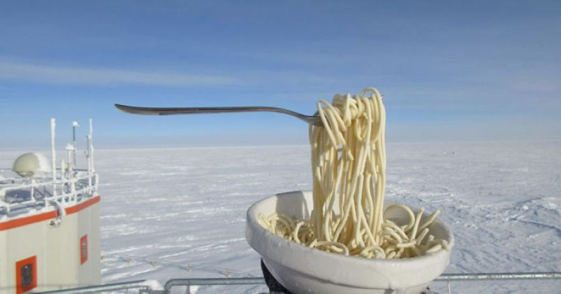 როგორ გამოიყურება ანტარქტიდაზე მომზადებული საკვები? - ფოტოგალერეა
