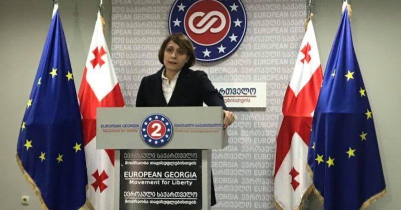 ევროპული საქართველო, სოციალური მუშაკების თემაზე, ჯანდაცვის მინისტრს პარლამენტში იბარებს