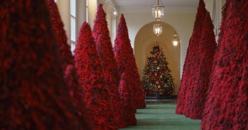 სისხლისფერი ნაძვის ხეები თეთრი სახლის საახალწლო მორთულობაში [video]