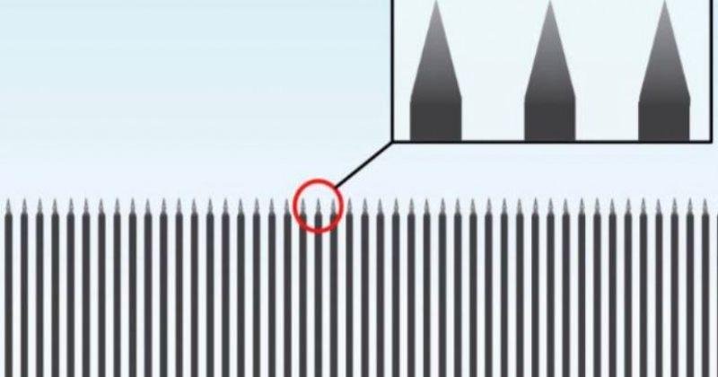 როგორი წარმოუდგენია ტრამპს სასაზღვრო კედელი, რომლის გამოც მთავრობა დაიხურა