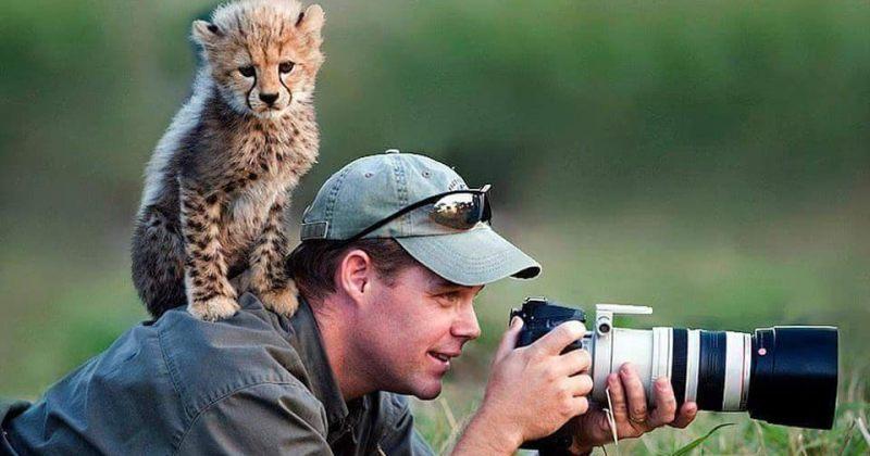 ფოტოგრაფები გარეულ ცხოველებთან ერთად ველური ბუნების გადაღებისას [გალერეა]