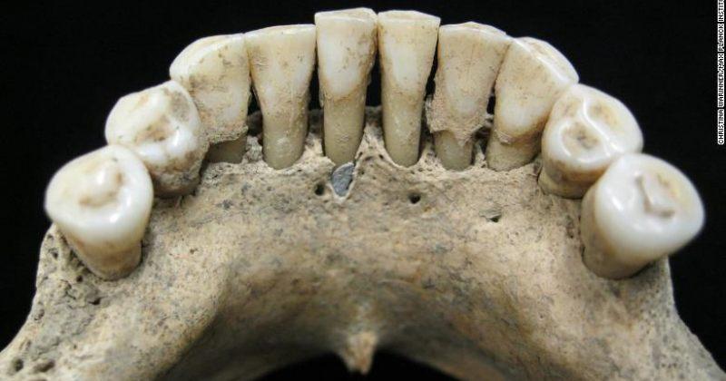 შუა საუკუნეების ქალის ჩონჩხის კბილებში აღმოჩენილი პიგმენტით დადგინდა, რომ ის გადამწერი იყო