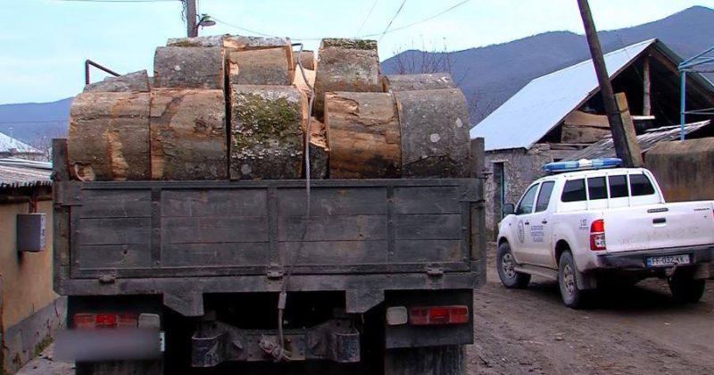 გარემოს დაცვა: ბოლნისში ხე-ტყის უკანონო ტრანსპორტირების 4 ფაქტი გამოვავლინეთ