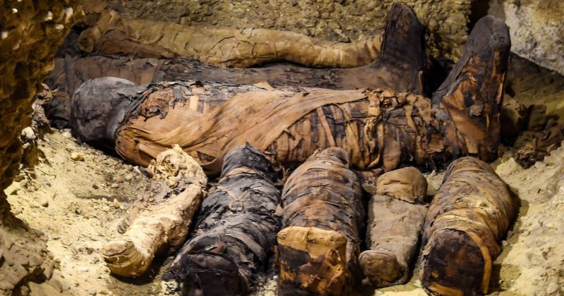 ეგვიპტეში აღმოჩენილ აკლდამაში 50-ზე მეტი მუმიაა, მათ შორის 12 ბავშვის [ფოტოები]