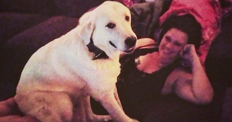 თავდამსხმელმა ძაღლი მას შემდეგ მოკლა, რაც მან თავისი ოჯახი სროლისას გადაარჩინა