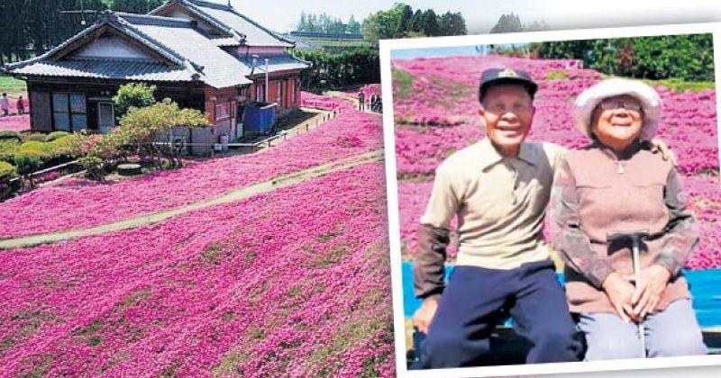 იაპონელმა კაცმა უსინათლო ცოლისთვის ათასობით ყვავილი დარგო, რათა ქალს მისი სურნელი ეგრძნო