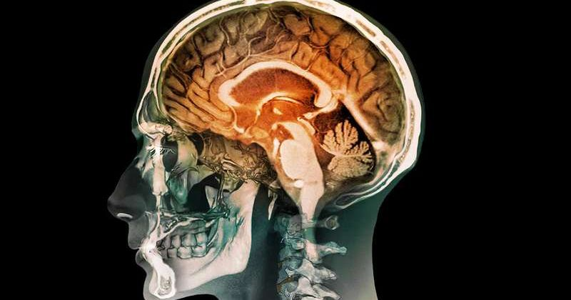 კვლევით თანახმად, ბავშვობაში გადატანილ ტრავმას ტვინის სტრუქტურის ცვლილება და დეპრესიის გაუარესება შეუძლია