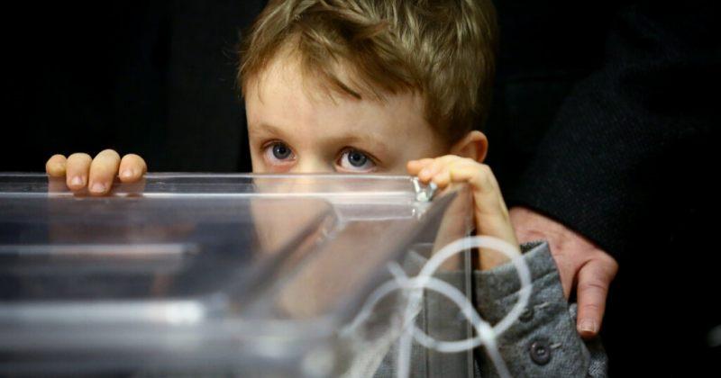 დღის ფოტო: პოროშენკოს შვილიშვილი პეტრო უყურებს, როგორ აძლევს ხმას ბაბუამისი