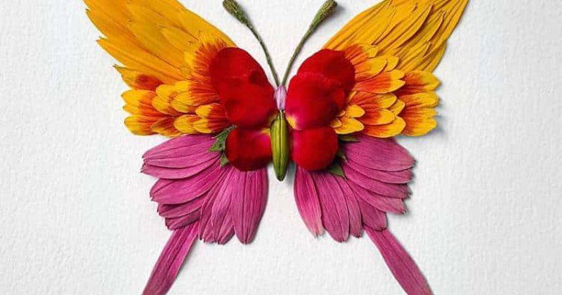 ახალმოკრეფილი ყვავილებისგან შექმნილი მწერების სკულპტურები [გალერეა]