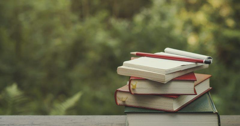 """11 მაისს ლისის ტბაზე """"წიგნების კითხვის ფესტივალი"""" გაიმართება"""