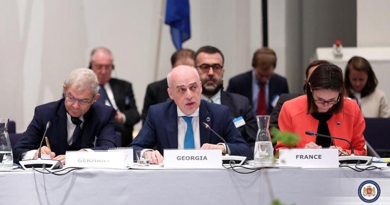 ზალკალიანი: აუცილებელი ევროპის საბჭო დარჩეს პრინციპების ერთგული