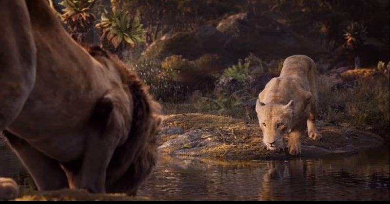 მეფე ლომის ეკრანიზაციაში BEYONCE ნალას ახმოვანებს - ახალი ტრეილერი [VIDEO]