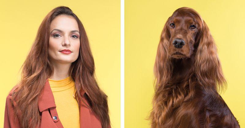 მსგავსებები ძაღლებსა და მათ პატრონებს შორის - ფოტოპროექტი