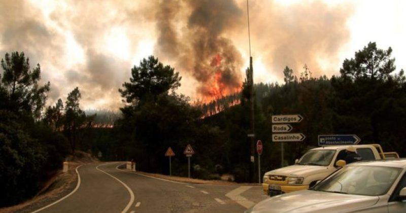 პორტუგალიაში ტყის ხანძარს ებრძვიან, დაშავდა 20 ადამიანი