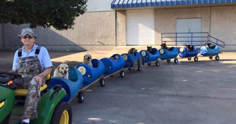 """აშშ-ში 80 წლის კაცმა """"ძაღლების მატარებელი"""" გააკეთა, რათა უპატრონო ცხოველები ასეირნოს"""