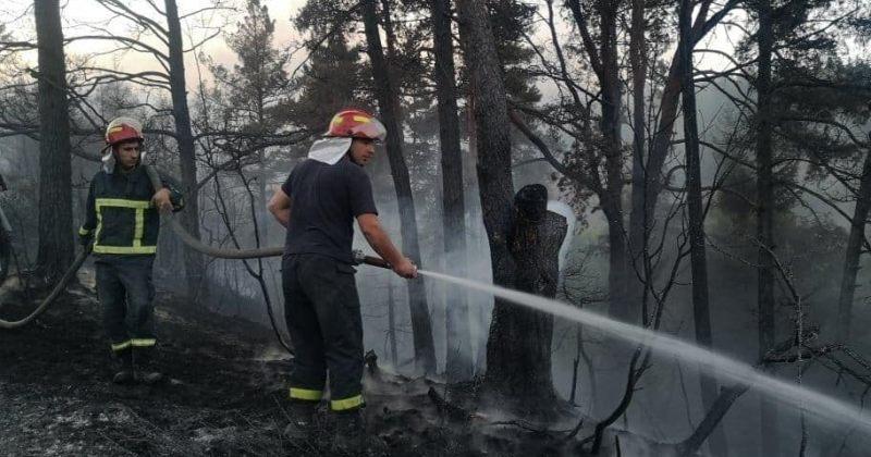 გორის სოფელ საყავრესთან ტყეში გაჩენილი ხანძრის ჩაქრობაში 2 ვერტმფრენი ჩაერთო
