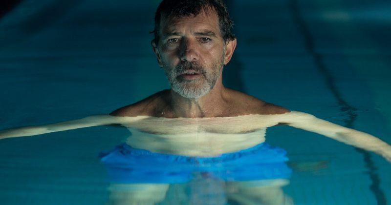 """ალმოდოვარის """"ტკივილი და დიდება"""" ესპანეთმა ოსკარზე გაგზავნა"""