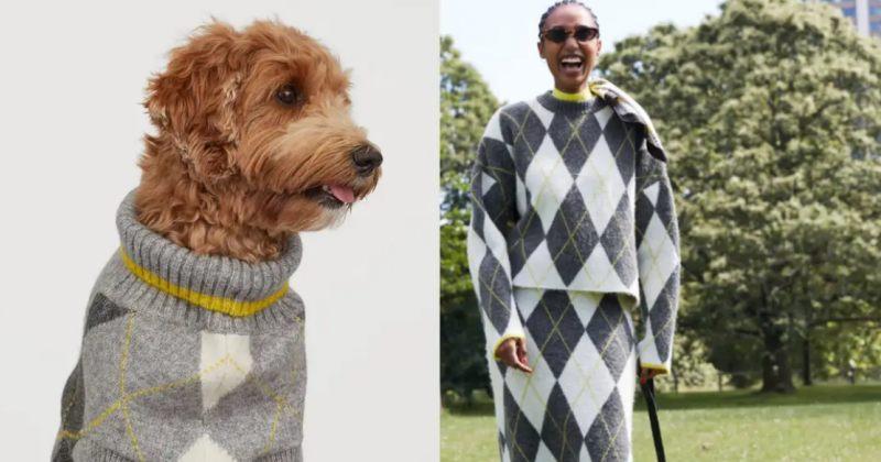 H&M-მა ადამიანებისთვის და მათი  ძაღლებისთვის ერთნაირი ტანსაცმლის კოლექცია გამოუშვა
